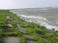 piershil-spui-storm-27okt-11
