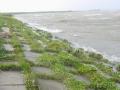 piershil-spui-storm-27okt-12