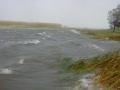 piershil-spui-storm-27okt-13