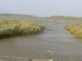 piershil-spui-storm-27okt-15