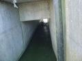 piershil-eendrachtspolder-23maart2006-02