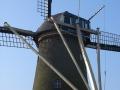 piershil-simonia-mrt2006-03