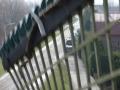 piershil-simonia-mrt2006-19
