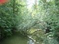piershil-heemtuin-2007aug-28
