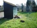 piershil-kinderboerderij-1april2007-11
