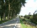 piershil-sluisjesdijk-nasteeg-3aug2007-49
