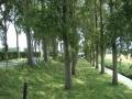 piershil-sluisjesdijk-nasteeg-3aug2007-59