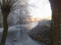 piershil-heemtuin-9jan2009-03