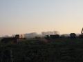 piershil-afbraak-volkstuinen-16nov2011-15