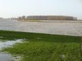 piershil-spui-hoogwater-6jan2012-05