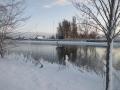 piershil-winter-10feb2013-09