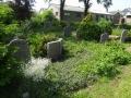 zuid-beijerland-oudebegraafplaats-26mei2016-32