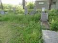 zuid-beijerland-oudebegraafplaats-26mei2016-46