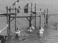 zwemles-oudetol-02