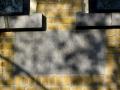 strijen-schelpweg8-2010-26april-01
